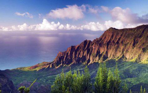 Aloha from Kauai, HI