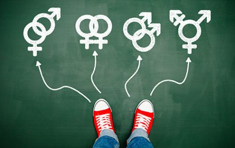 SVHS' Policy On Transgender Students Largely Dependent on State