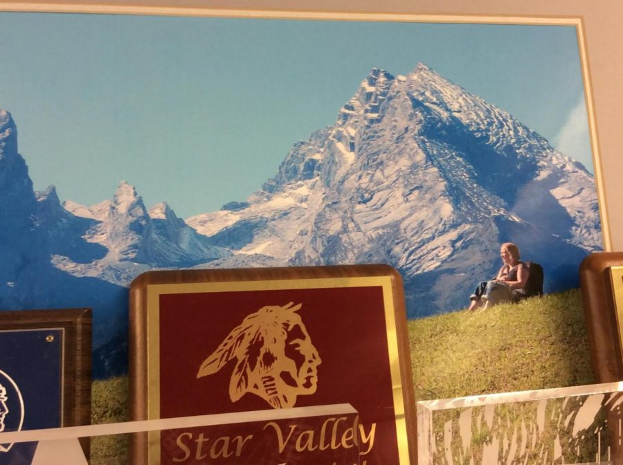 HIGH%3A+Mr.+Draney%27s+wife+chills+in+the+shadows+of+the+Alps+in+this+photo+that+hangs+in+his+room.