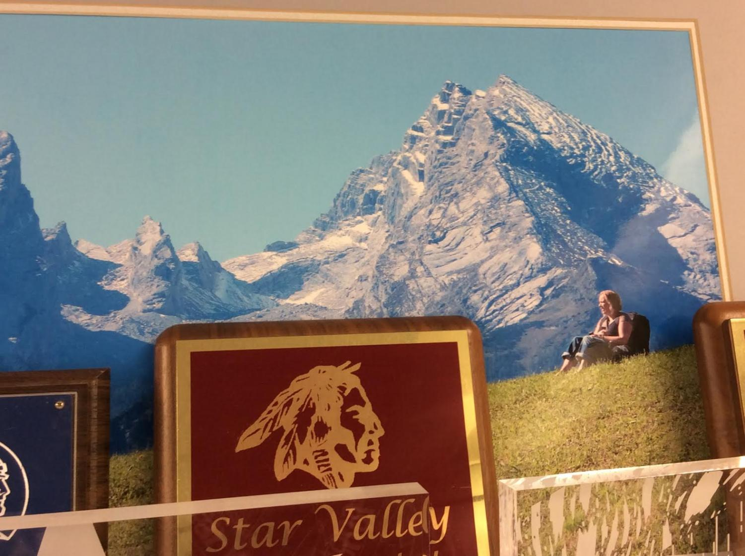 HIGH: Mr. Draney's wife chills in the shadows of the Alps in this photo that hangs in his room.