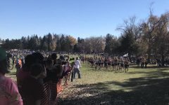 Star Valley to Host 2019 WHSAA State Cross Country