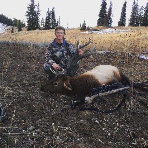 Elk Hunting More Than Hobby