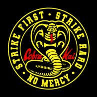 MERCY IS FOR THE WEAK: The popular Netflix series Cobra Kai is bring out old and young viewers alike.
